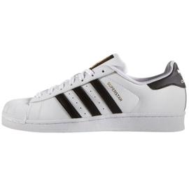 Adidas Originals Superstar M C77124 kengät