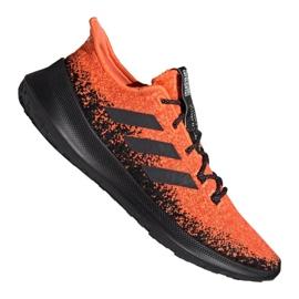 Punainen Juoksukengät adidas SenseBOUNCE + M G27233