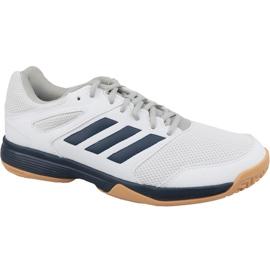 Valkoinen Adidas Performance Speedcourt M EF2623 kengät
