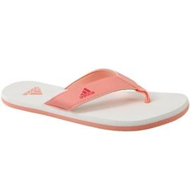 Oranssi Flip-flops adidas Beach Thong 2 Jr CP9379