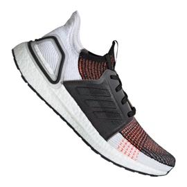 Juoksukengät adidas UltraBoost 19 m M G27519 monivärinen