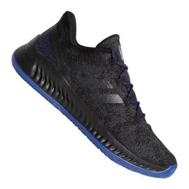 Adidas Harden B / EXM F97250 kengät