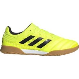 Adidas Copa 19.3 Sala M F35503 sisäkengissä