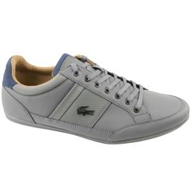 Harmaa Lacoste Chaymon 118 1 M CAM0011G1N81 kengät