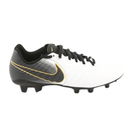 Jalkapallokengät Nike Tiempo Legend 7 Academy Fg M AO2596-100