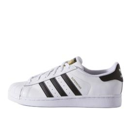 Adidas Originals Superstar Fundation Jr C77154 kengät valkoinen