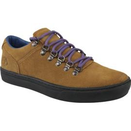 Timberland Adv 2.0 Cupsole Alpine Ox M A1SHV kengät ruskea