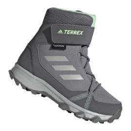 Adidas Terrex Snow Cf Cp Cw Jr G26580 kengät harmaa